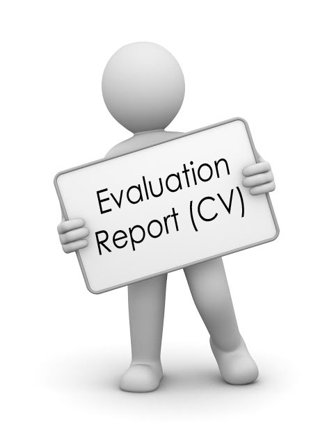 Cv Review  Cv Checker  Cv Evaluation Report